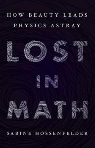 Forsiden til Kindle-versjonen av Lost in Math boka.